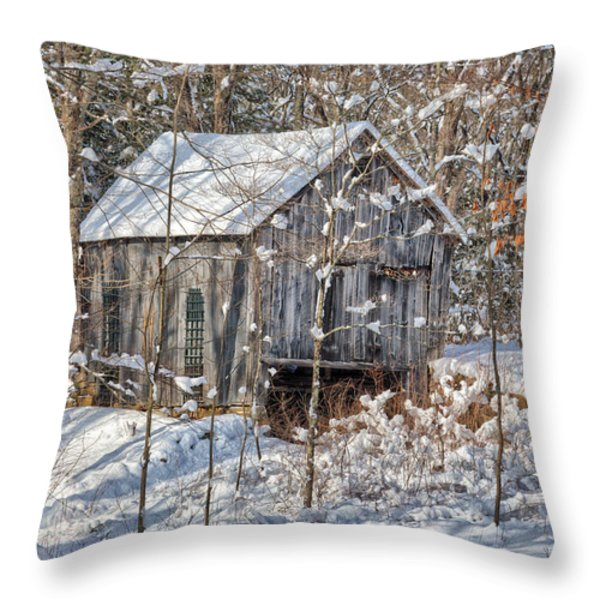 New England Winter Woods Throw Pillow by Bill  Wakeley