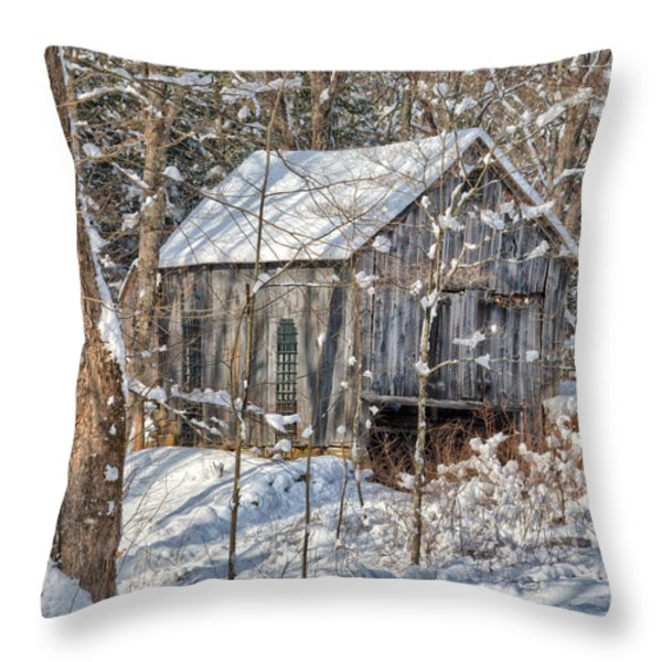 New England Winter Woods Square Throw Pillow by Bill  Wakeley