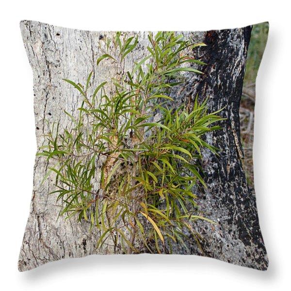 New Growth Throw Pillow by Steven Ralser
