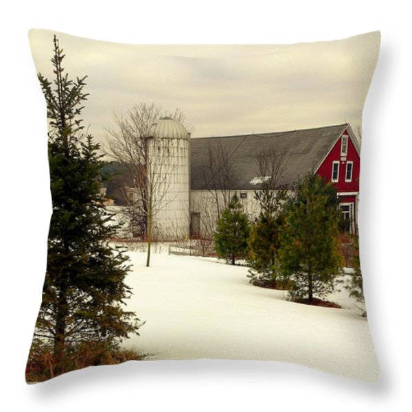 New Hampshire Barn Throw Pillow by Janice Drew