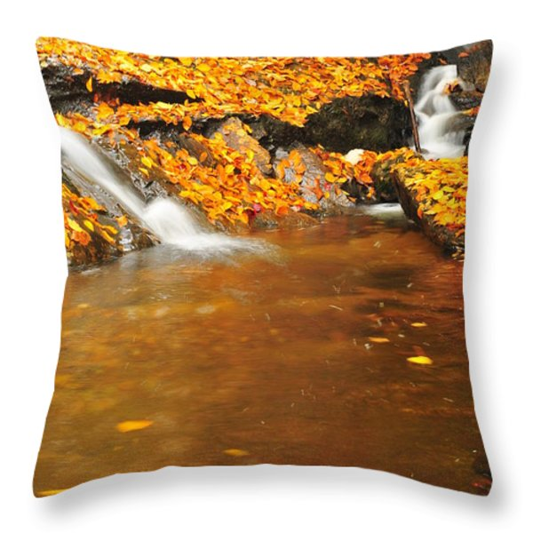 New Hampshire Stream Throw Pillow by Catherine Reusch  Daley