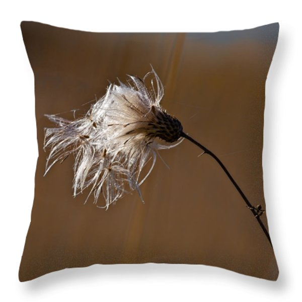 New Life Is Comming Throw Pillow by Leif Sohlman