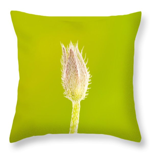 New Life Throw Pillow by Wim Lanclus