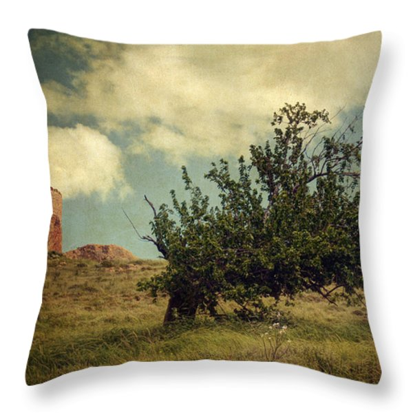 New Memories Throw Pillow by Taylan Soyturk