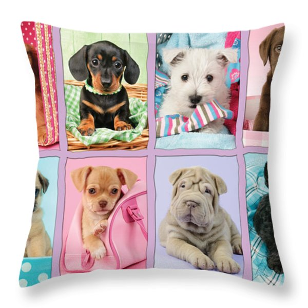 New Puppy Multipic Throw Pillow by Greg Cuddiford
