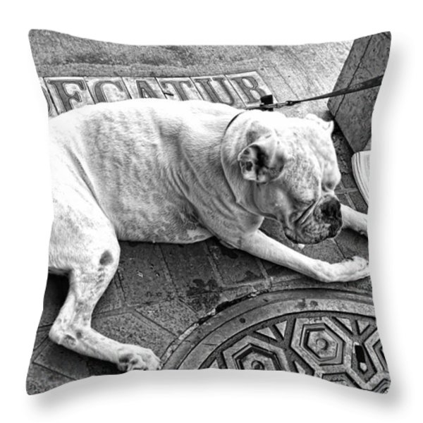 Newsworthy Dog In French Quarter Black And White Throw Pillow by Kathleen K Parker