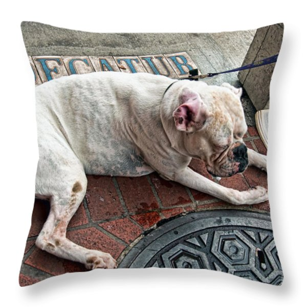 Newsworthy Dog In French Quarter Throw Pillow by Kathleen K Parker