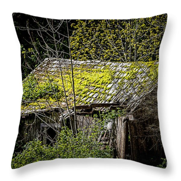 Newton's 1st Law Throw Pillow by Jon Burch Photography