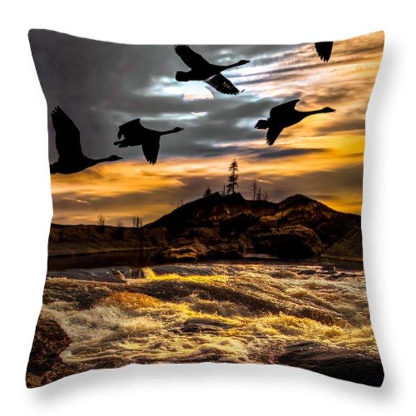 Night Flight Throw Pillow by Bob Orsillo