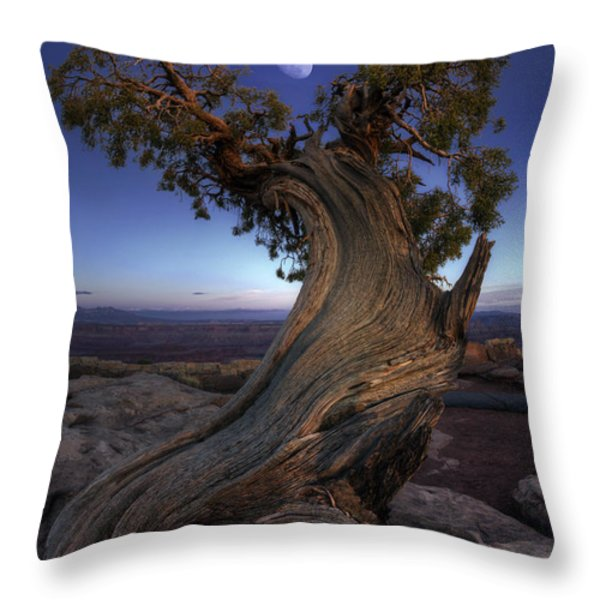 Night Guardian Of The Valley Throw Pillow by Marco Crupi