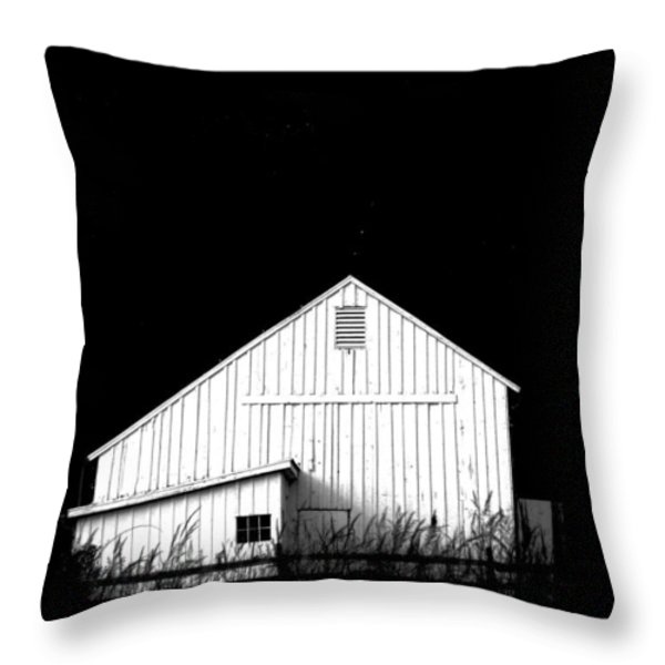 Nightfall Throw Pillow by Angela Davies