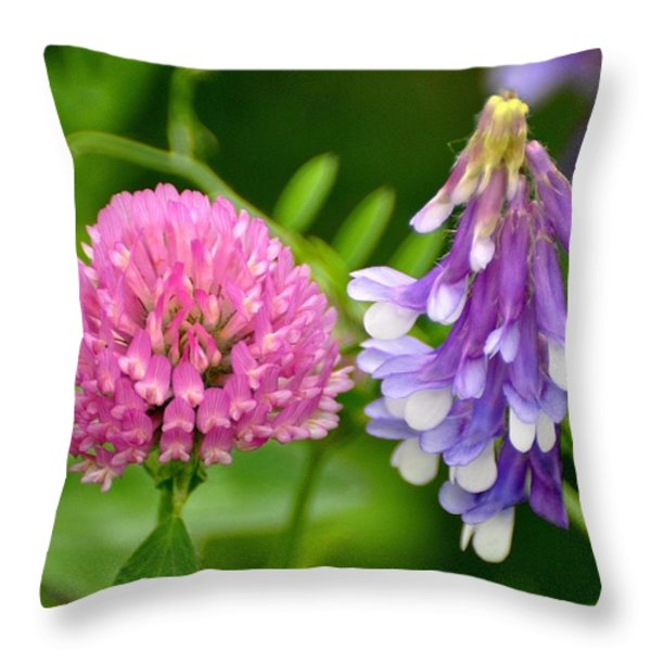 Non Identical Twins Throw Pillow by Marty Koch
