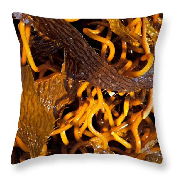 Noodles of the Sea Throw Pillow by Gwyn Newcombe