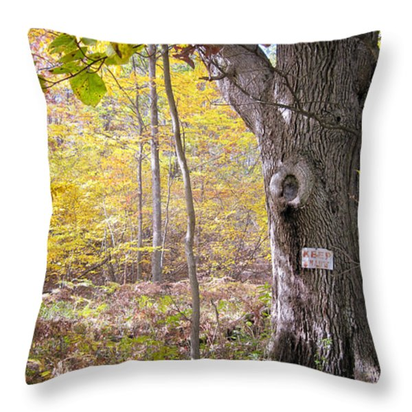 North Woods Guardian Throw Pillow by Mary Lee Dereske