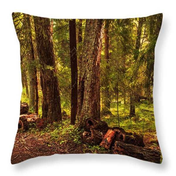 Northern Forest Throw Pillow by Jenny Rainbow