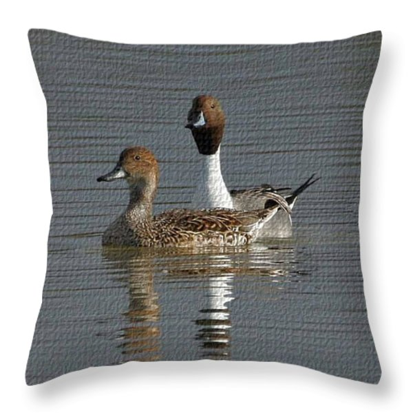 Northern Pintail Pair  Throw Pillow by Tom Janca