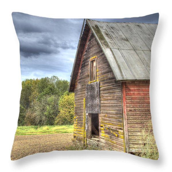 Northwest Barn Throw Pillow by Jean Noren