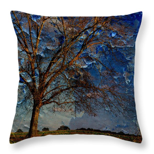 Nothing But Blue Skies Throw Pillow by Jan Amiss Photography