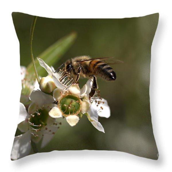 Nourishment Throw Pillow by Joy Watson