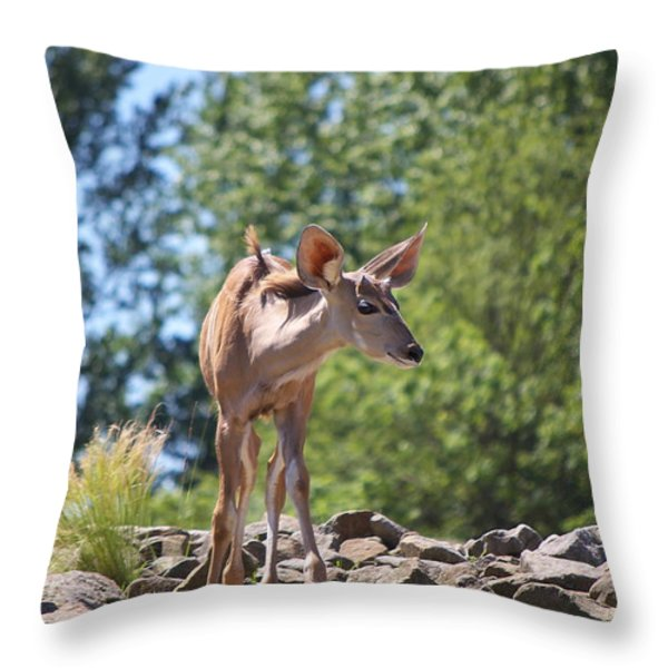 Nyala Throw Pillow by Angela Doelling AD DESIGN Photo and PhotoArt