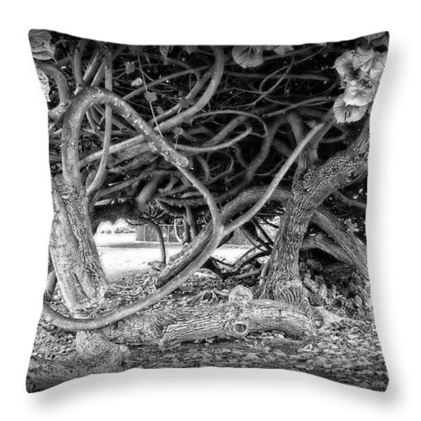 OAHU GROUND VINES - HAWAII Throw Pillow by Daniel Hagerman