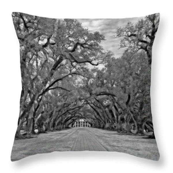 Oak Alley 3 monochrome Throw Pillow by Steve Harrington