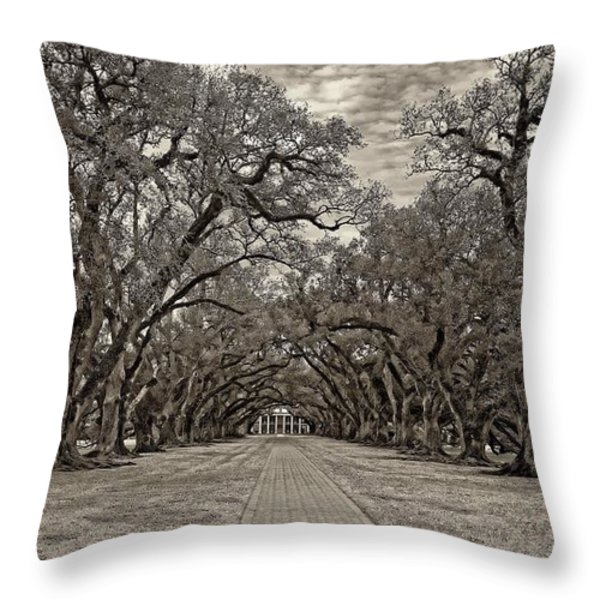 Oak Alley 3 sepia Throw Pillow by Steve Harrington