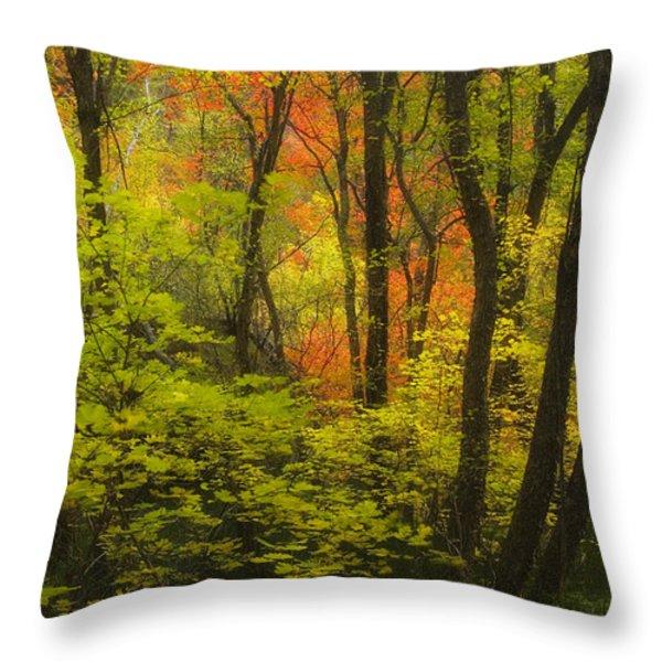 Oak Creek Splendor Throw Pillow by Peter Coskun