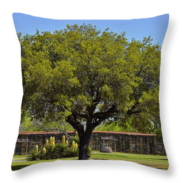 Oak Tree Mission San Jose Tx Throw Pillow by Christine Till