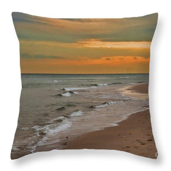 Oblivious Throw Pillow by Barbara McMahon