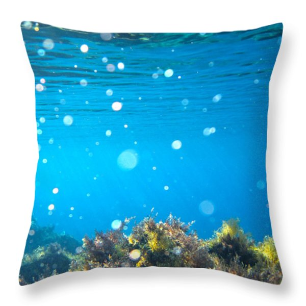 ocean garden Throw Pillow by Stylianos Kleanthous