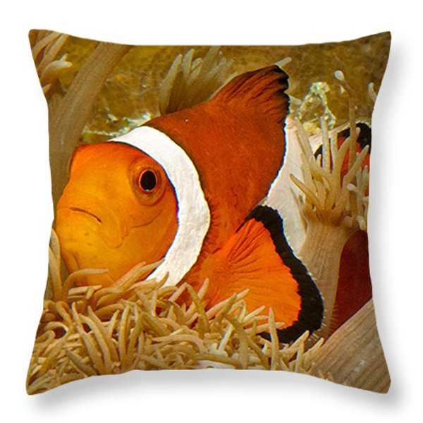 Ocellaris Clown Fish No 1 Throw Pillow by Jerry Fornarotto