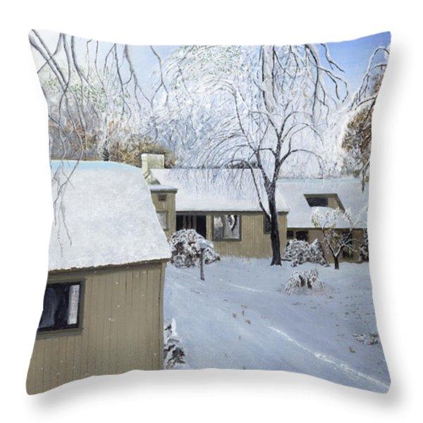Oct Snow Storm Throw Pillow by Stuart B Yaeger