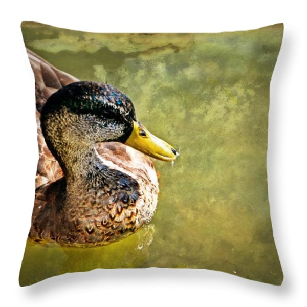 October Duck Throw Pillow by Marty Koch