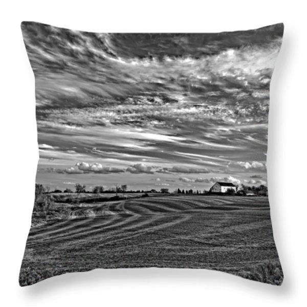 October Patterns bw Throw Pillow by Steve Harrington
