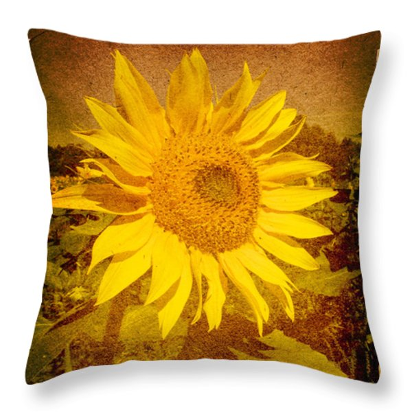 Of Sunflowers Past Throw Pillow by Bob Orsillo