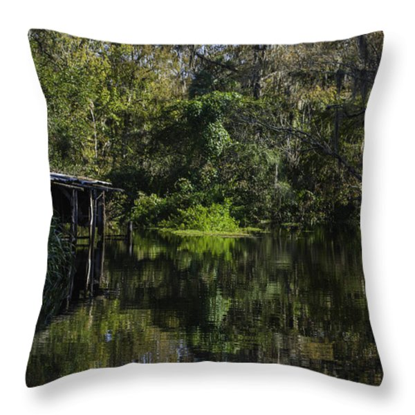 Off The Beaten Path Throw Pillow by Judy Hall-Folde