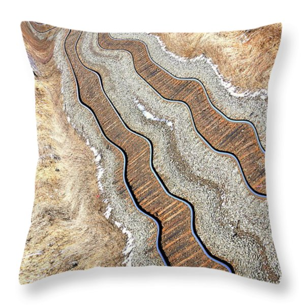 Off Tracks Throw Pillow by Valentino Visentini