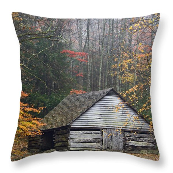 Ogle Place - D008241 Throw Pillow by Daniel Dempster