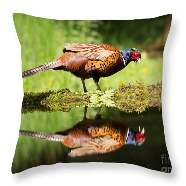 Oh My What A Handsome Pheasant Throw Pillow by Louise Heusinkveld