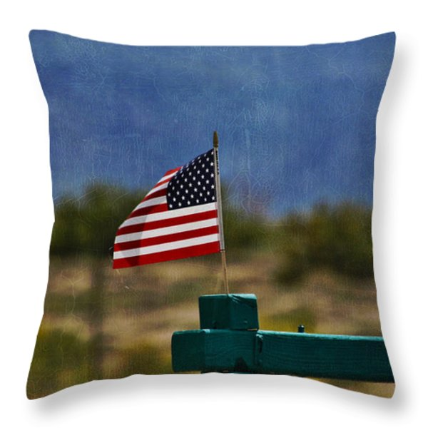 Oh Say Can You See Throw Pillow by Janice Rae Pariza