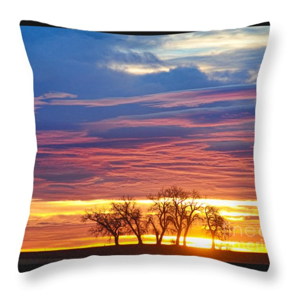 Oh What A Beautiful Morning Throw Pillow by James BO  Insogna