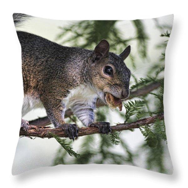 Ok You Caught Me Throw Pillow by Deborah Benoit