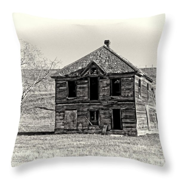 Okanogan Homestead - Washington Throw Pillow by Daniel Hagerman