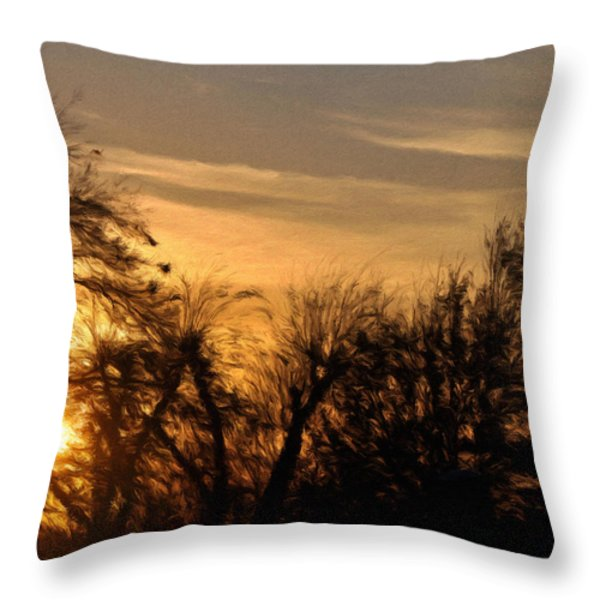 Oklahoma Sunset Throw Pillow by Jeff Kolker