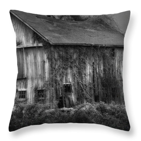 Old Barn Throw Pillow by Bill Wakeley