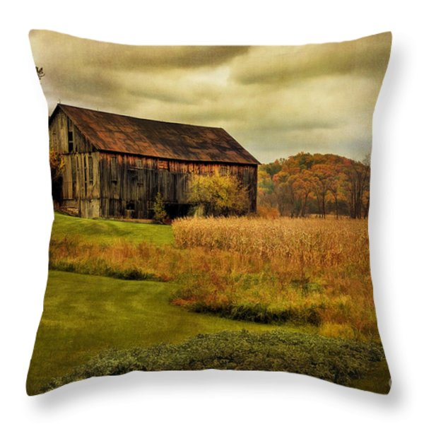 Old Barn In October Throw Pillow by Lois Bryan
