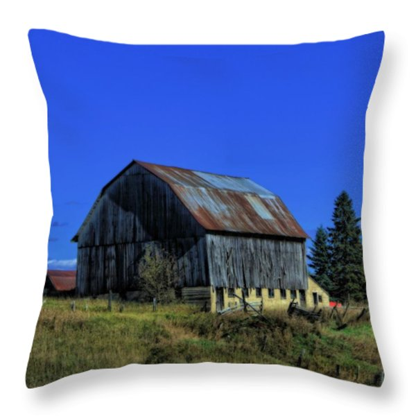 Old Broken Down Barn In Ohio Throw Pillow by Dan Sproul