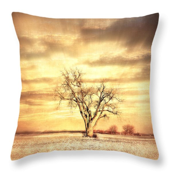 Old Cottenwood Throw Pillow by Julie Hamilton