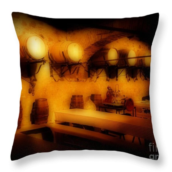 Old European Wine Cellar Throw Pillow by John Malone